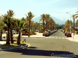 Puerto Banús Spain - Wide streets are lined with palm trees