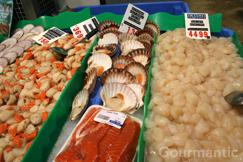 assortment of scallops