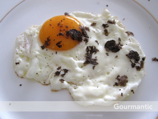 Perigord truffle with eggs