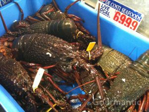 Whopper live lobsters