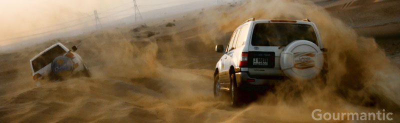 Dubai Desert Safari and Dune Bashing