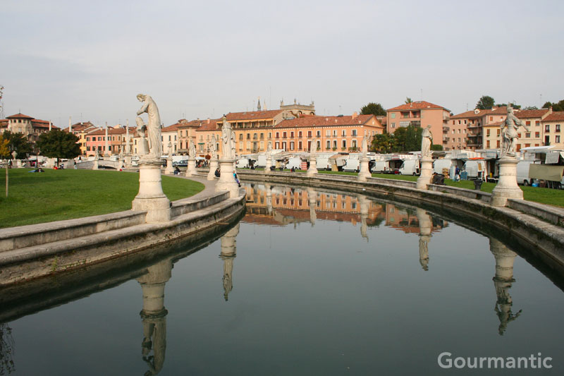 Day Trip from Venice: Padova