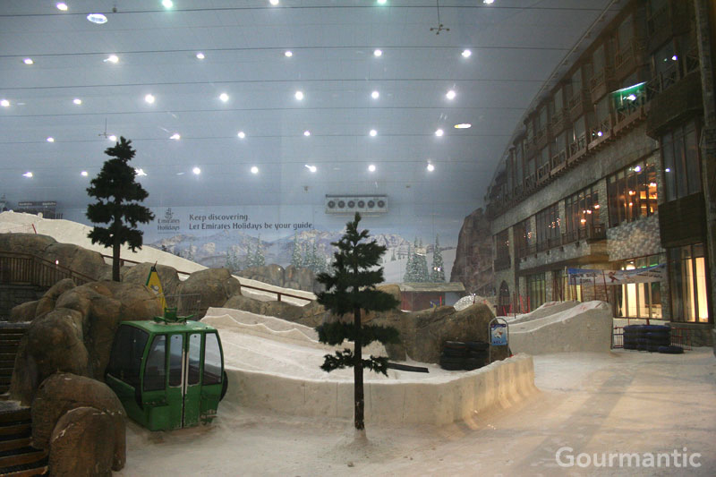 Ski Dubai - Mall of the Emirates