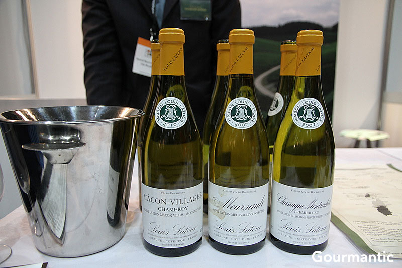 Good Food and Wine Show  (9)