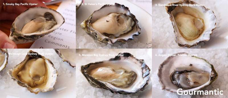Oysters at the House