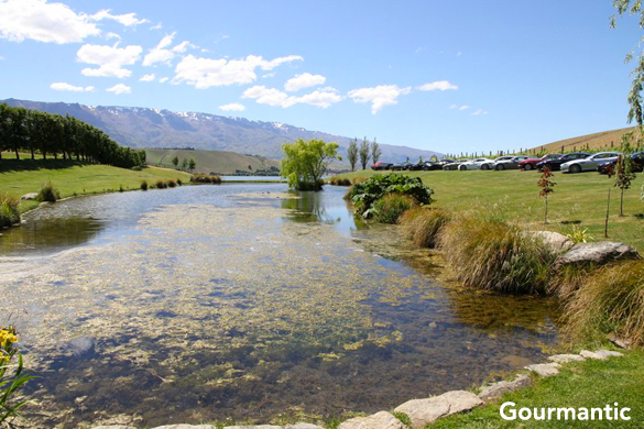 Central Otago Wineries