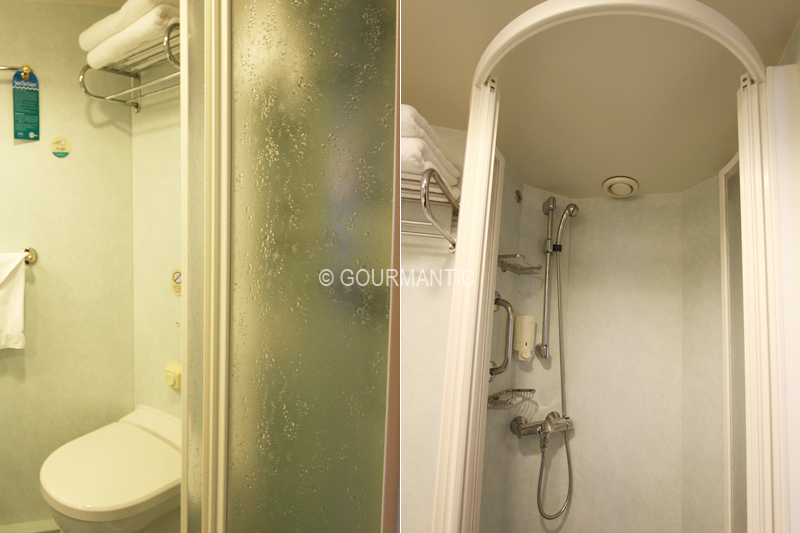 Voyager of the Seas Staterooms Shower